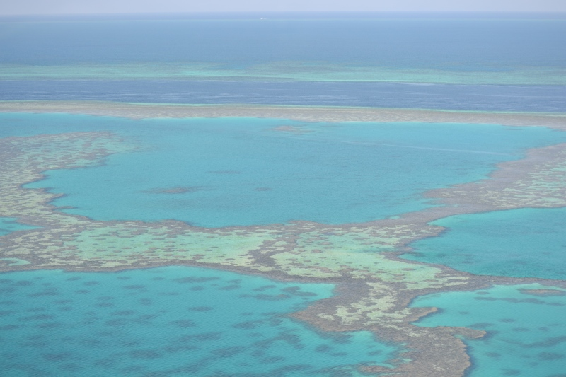 Beautiful Great Barrier Reef