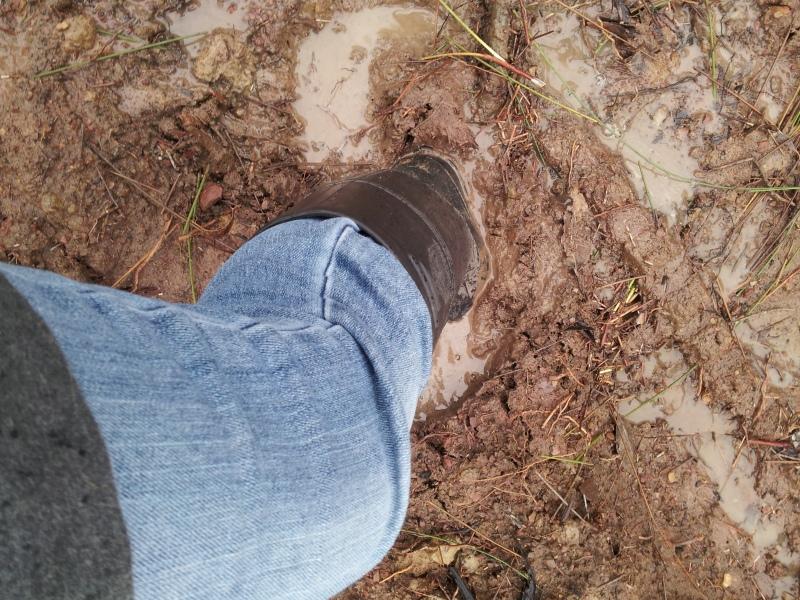 Squishy mud....