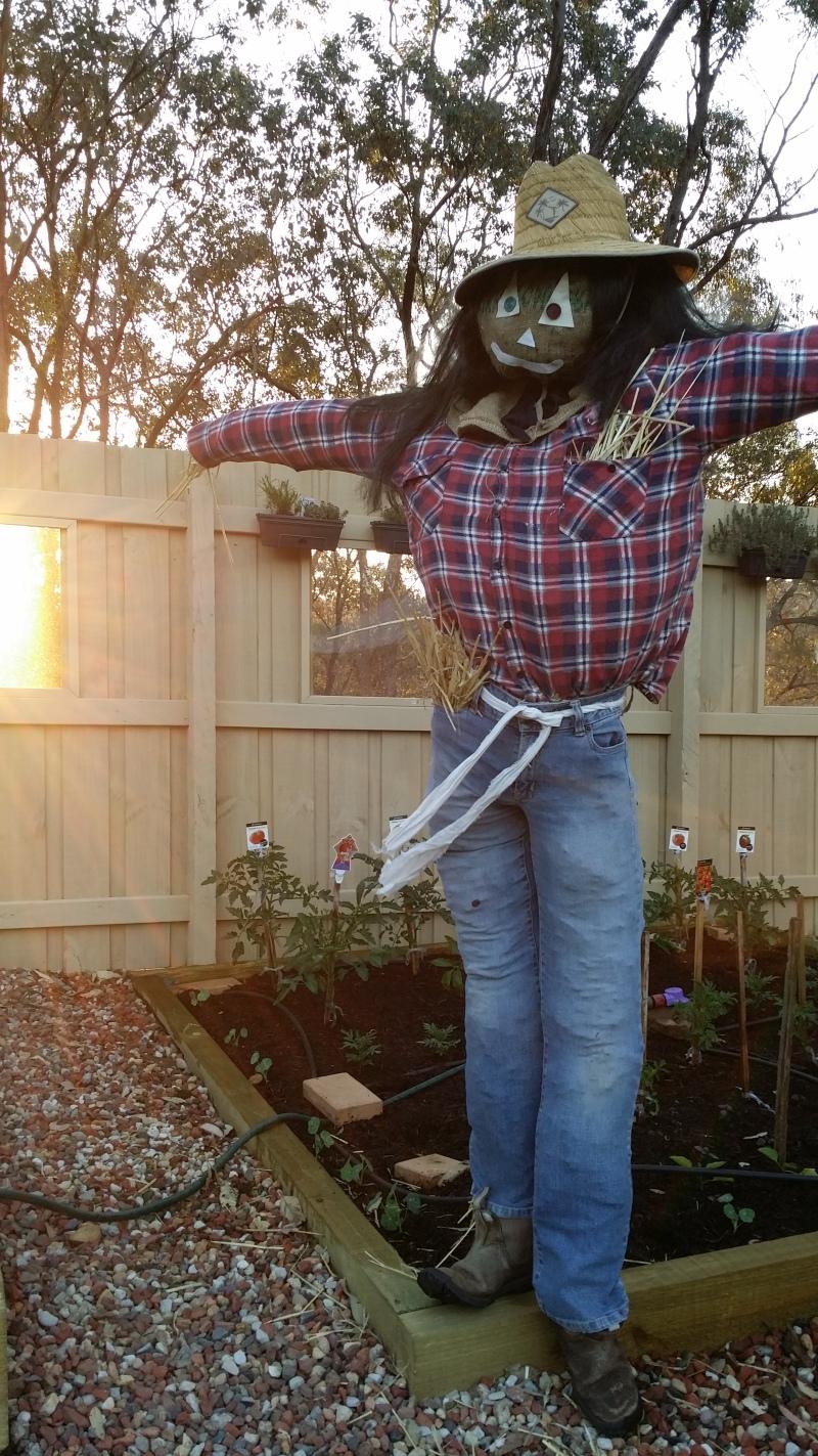 Twerker the scarecrow