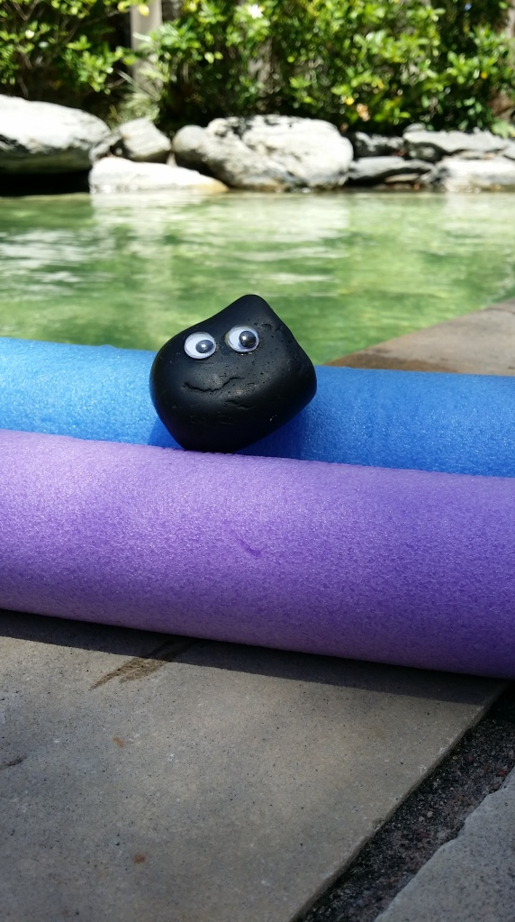 Bashful chilling on the pool noodles
