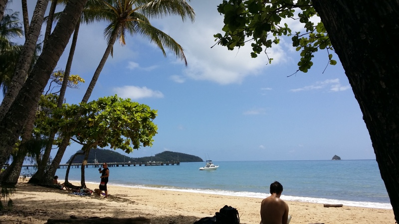 Beach at Palm Cove