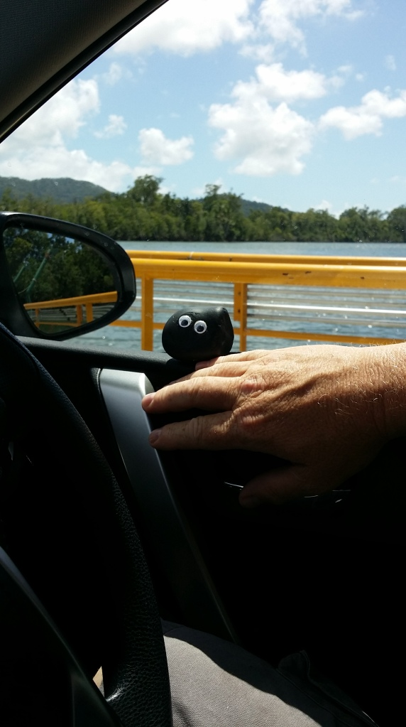 All aboard Bashful admiring the Daintree river