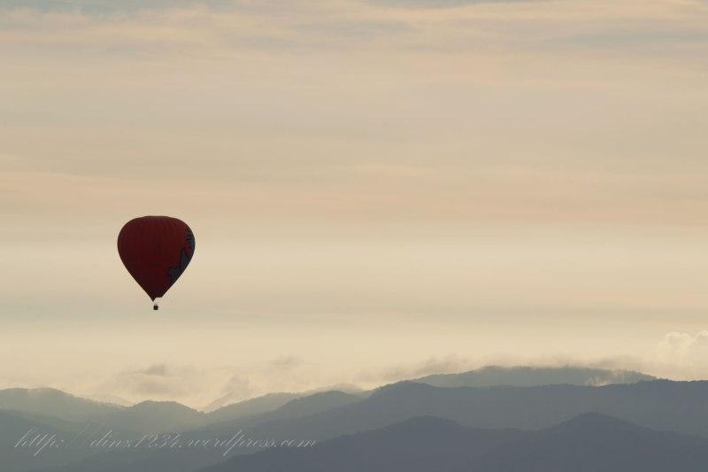 Koala-_Balloon_sunrise