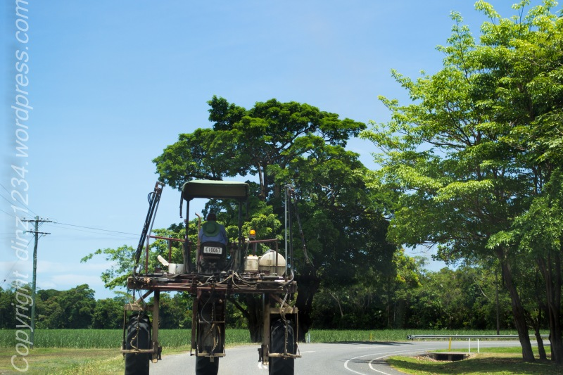 Cane tractor as we head out of the gorge