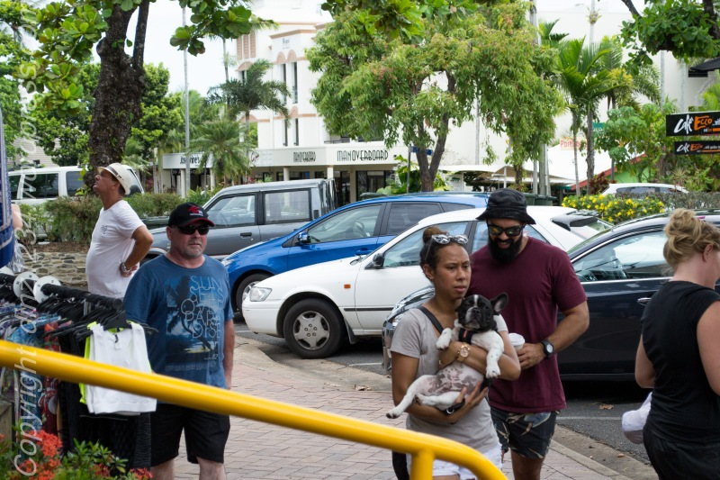 We had some lunch in Port Douglas..and I loved this little one refusing to walk!