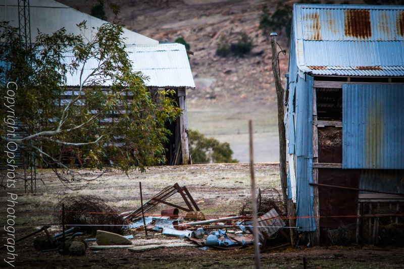 The back view ..old sheds and rust..love it
