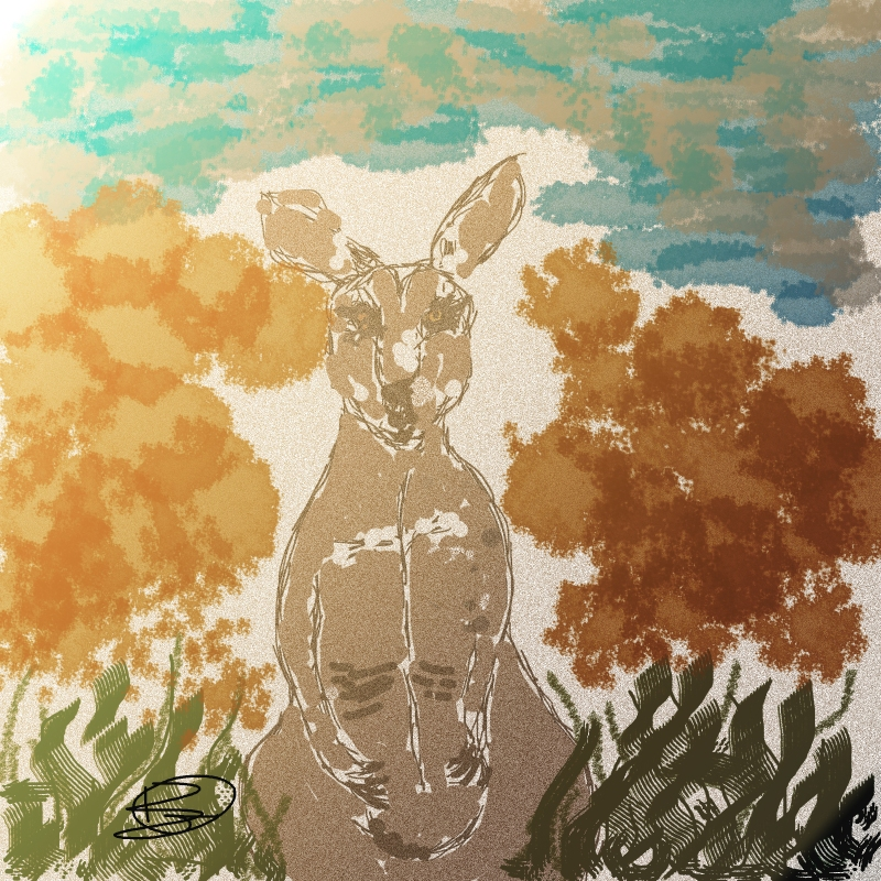 Sketching the roos