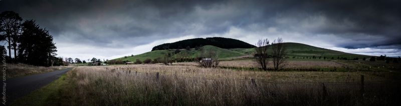 The rumbling skies frame the pine trees and  farm house @ Mount Franklin